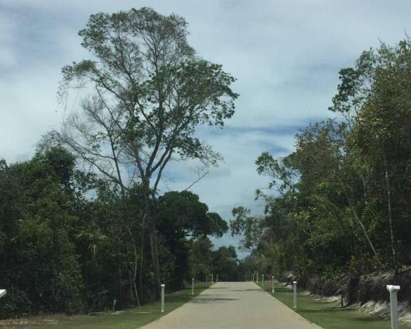 Lote 800m² Cond. Ilha dos Pássaros Praia do Forte / Litoral Norte / Estrada do Coco - Foto 13