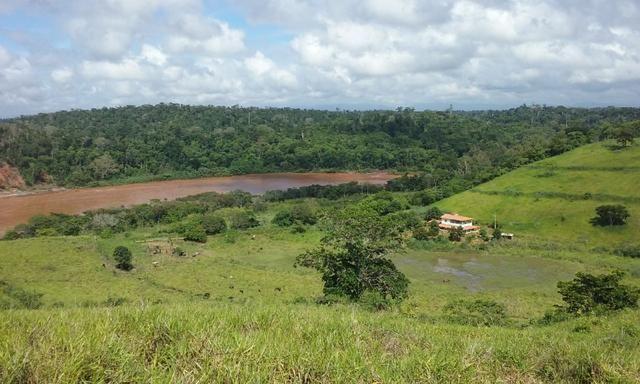 36 hectares na região pingo dagua - Foto 2