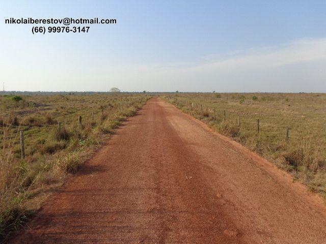 Fazenda 21.000 hectares nordeste mt nikolaiimoveis