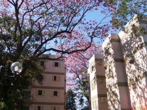 Apartamento Residencial Monte Castelo - 3 Quartos