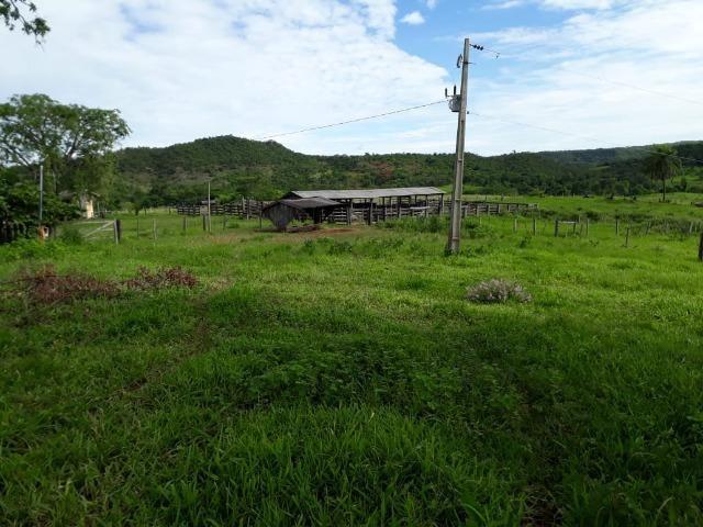 Fazenda c/ 912he, 550he formados, Terra boa, Itiquira-MT - Foto 18