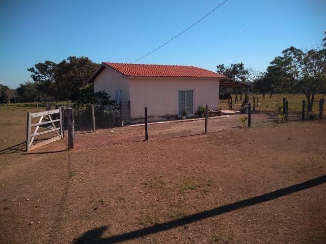 Fazenda c/ 920he, com 600he formados, as margens da BR, a 35km de Cuiabá-MT - Foto 8