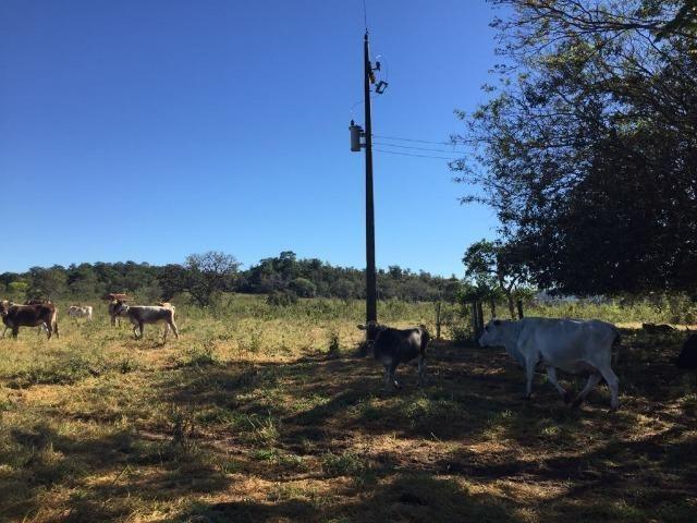 Fazenda c/ 570he, c/ 90% aberto/juquirado, 8km de Itiquira-MT, entrada + 4 parcelas - Foto 15