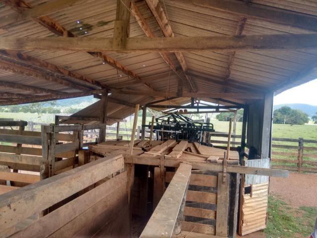 Fazenda 570 Hectares Grande Oportunidade - MT - Foto 11