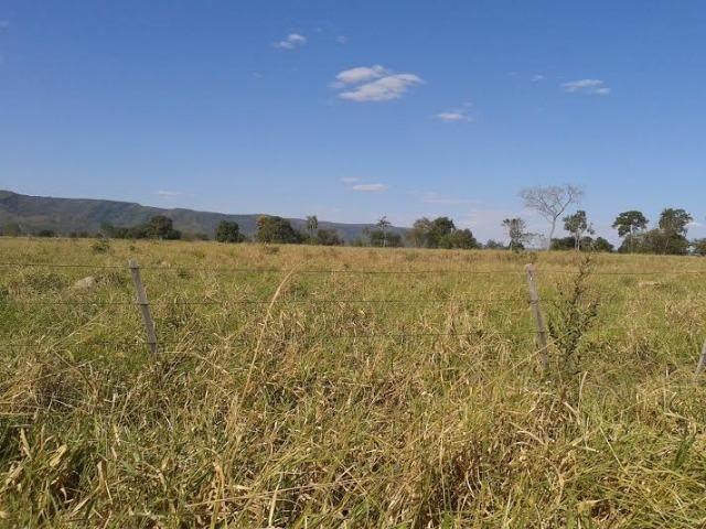 Fazenda com 1.000he c/ 80% formado, 50km de Cuiabá - Foto 9