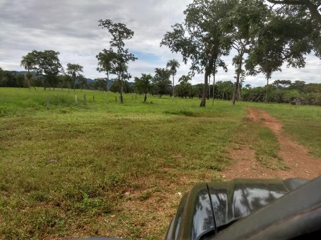 Fazenda com 200he, c/ 50% formado, terra de cultura, 40km de Cuiabá-MT - Foto 19