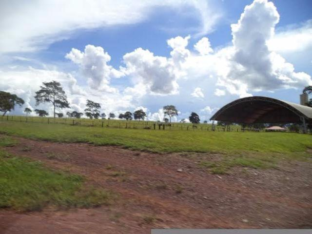 Fazenda c/ 3.480he c/ 80% formada, as margens da BR, Rondonópolis-MT - Foto 15