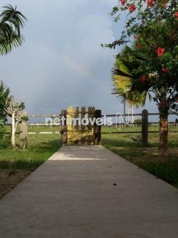 Terreno à venda em Fazenda, São gonçalo dos campos cod:720362 - Foto 10