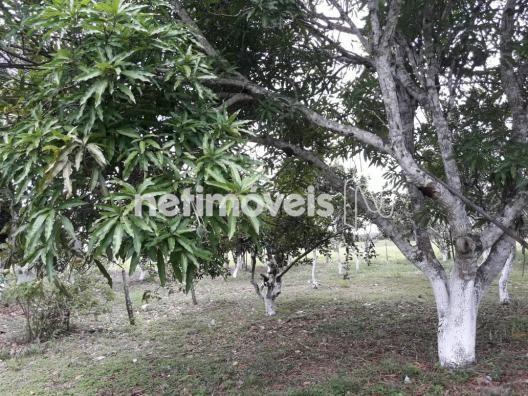 Terreno à venda em Fazenda, São gonçalo dos campos cod:720362 - Foto 11