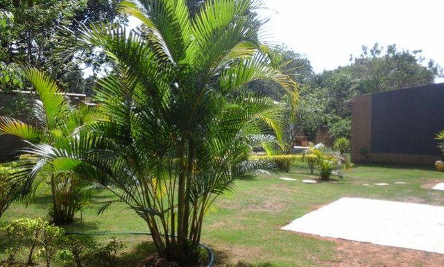 Chácara Renascer Próximo ao Iguatemi - Foto 10