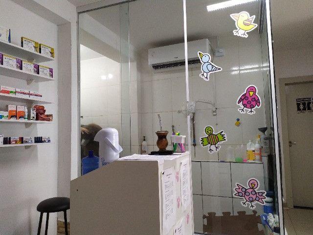 Vendo PetShop + Banho e Tosa + 2Consultorios - Foto 4