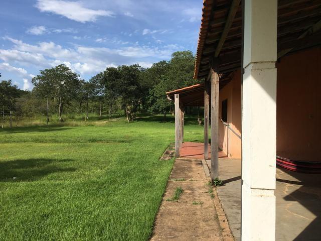 Vendo Chacara na região do Sucuri - Foto 2