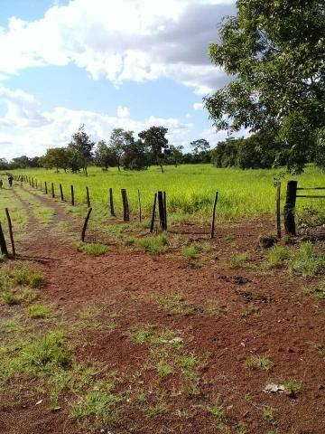 Fazenda 350,hectares beira do rio cuiaba - Foto 8