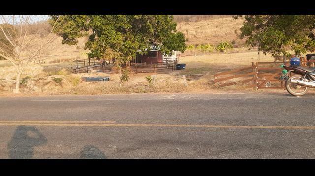 Sítio 16 hectares com 2 tanques - Foto 2