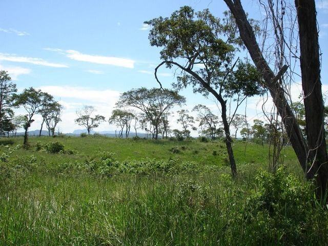Fazenda 484 hectares em Governador Valadares/MG