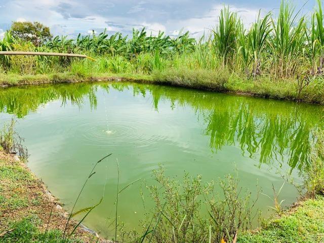 Samuel Pereira oferece: Linda chácara 4,2 hectares, Núcleo Rural Bom Sucesso regularizado