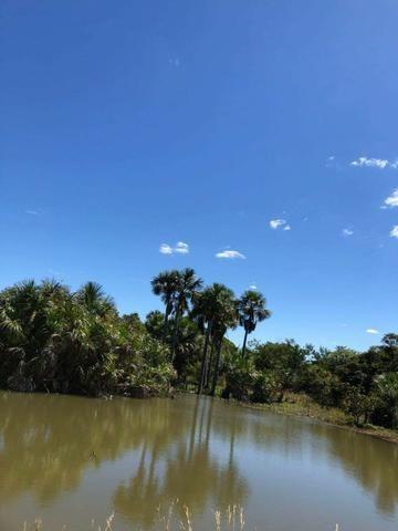 Fazenda - Paraíso do Tocantins/TO - Foto 5