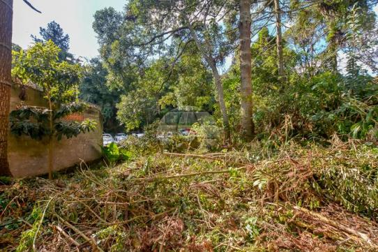 Terreno à venda em Vista alegre, Curitiba cod:144620 - Foto 9