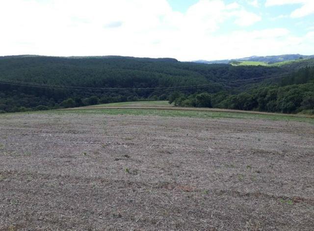 Terreno rural - Foto 5