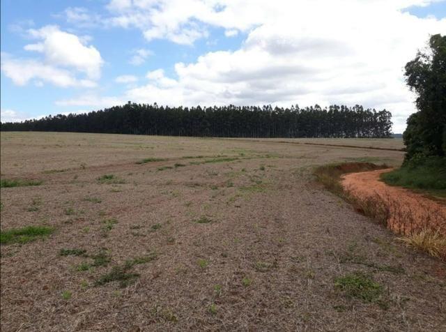 Terreno rural - Foto 11