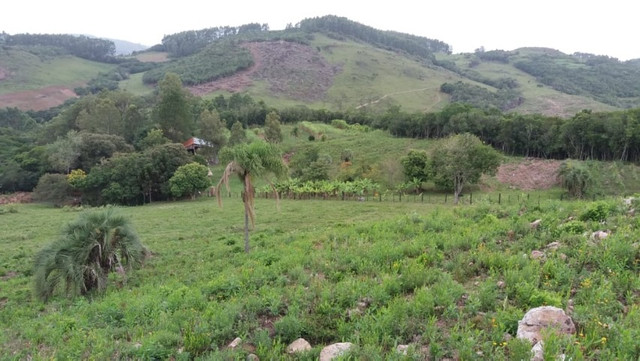 Velleda oferece 35 hectares , 1 km da cidade, local paradisíaco - Foto 4