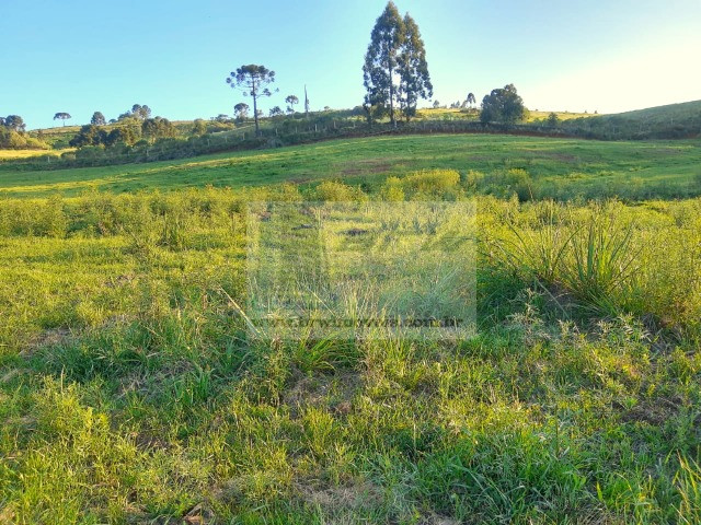 Terreno Rural com 47.442m² no Capão Alto - Foto 8
