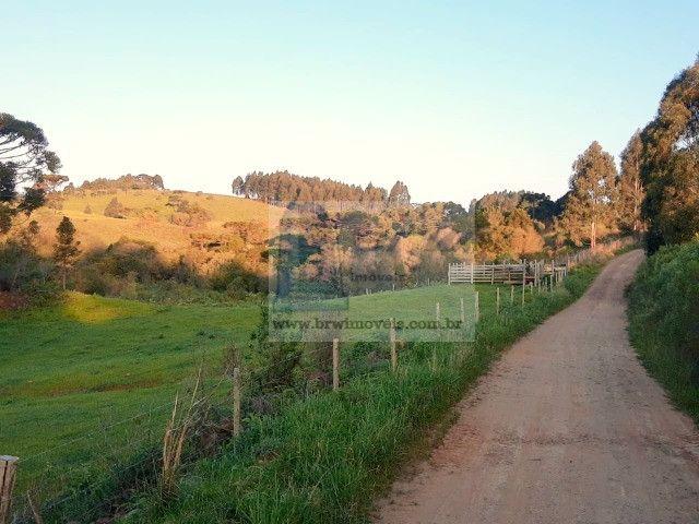 Terreno Rural com 47.442m² no Capão Alto - Foto 13