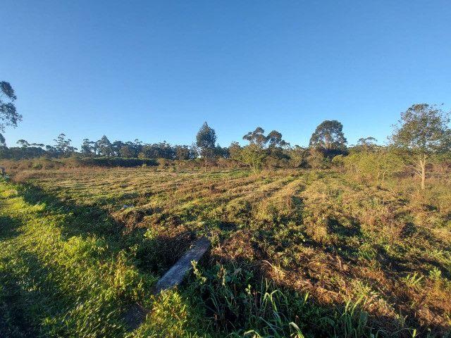 Velleda oferece sítio 2,5 hectares a 700 metros da RS040, ac troca - Foto 18