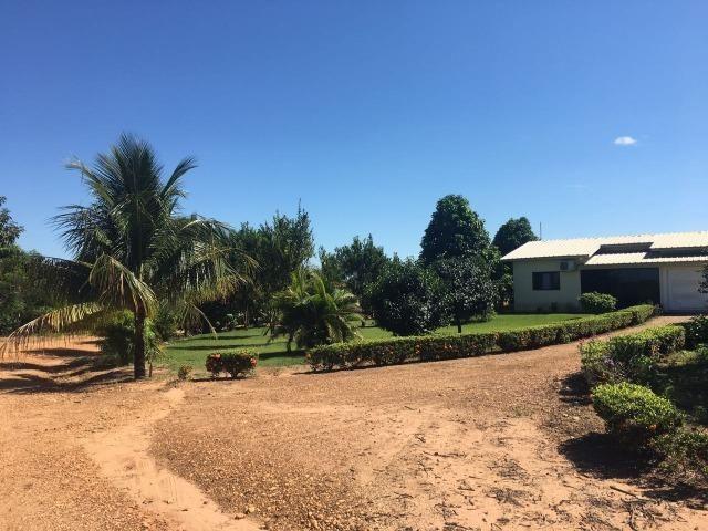 Granja com área de 40 hectares, localizada a 50 km de Lucas do Rio Verde - Foto 14
