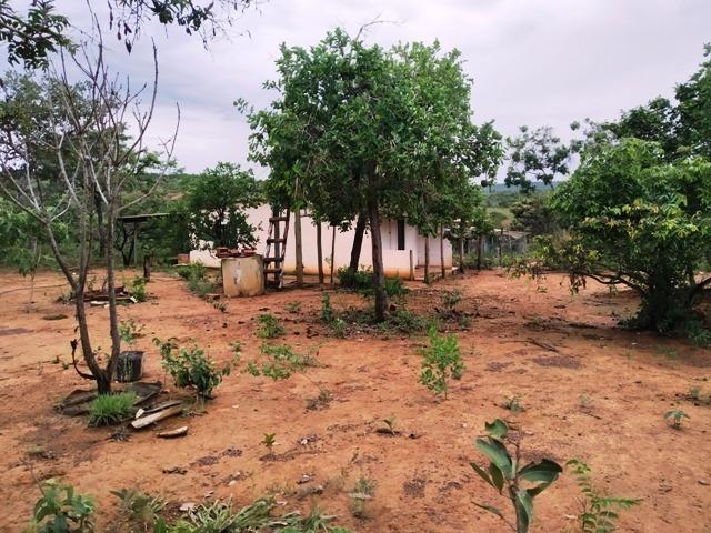 Elci Martins Vende Fazendinha em Três Marias, 50.000m2, água e luz - Foto 4