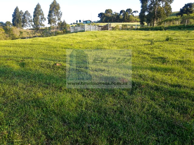 Terreno Rural com 47.442m² no Capão Alto - Foto 2