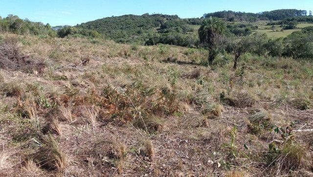 Velleda oferece 35 hectares , 1 km da cidade, local paradisíaco - Foto 12