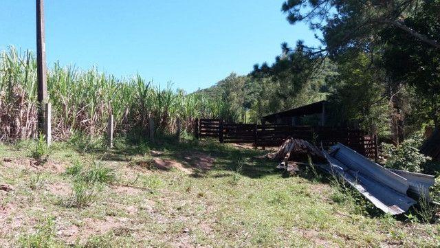 Velleda oferece 35 hectares , 1 km da cidade, local paradisíaco - Foto 11