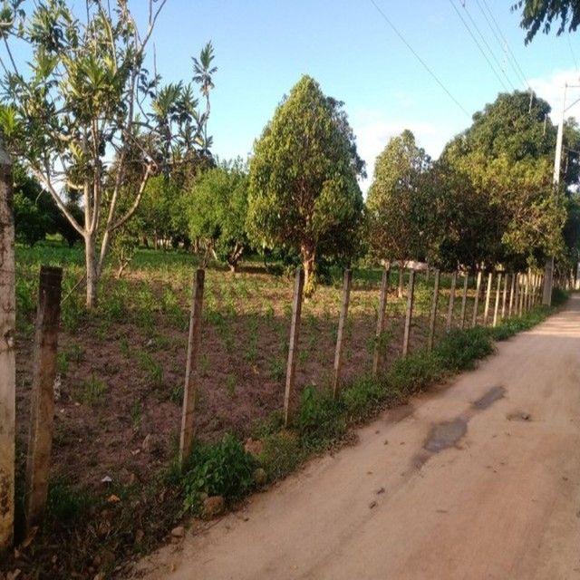 Sala7 Imobiliaria - Terreno em São Gonçalo dos Campos/Ba
