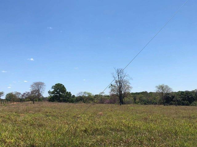 Fazenda - Paraíso do Tocantins/TO - Foto 18