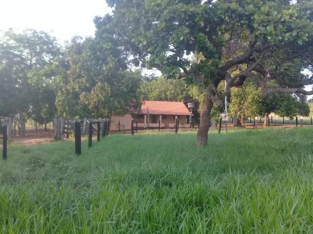 Fazenda - Paraíso do Tocantins/TO