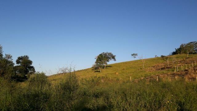 GRAMA - Residencial São Luiz (Kátia Corretora) - Foto 4