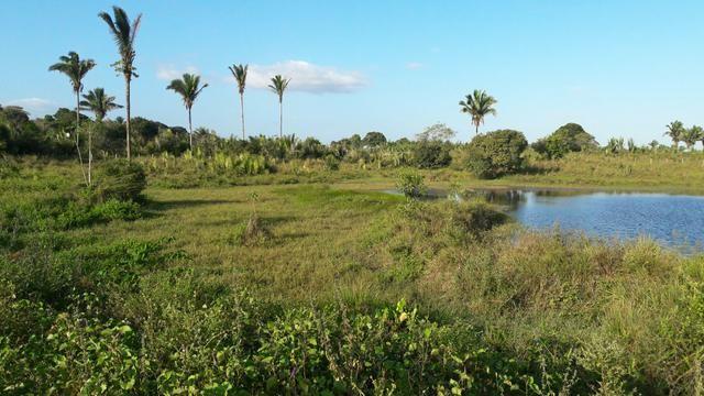 Vendo terreno com propriedade de 200m - Foto 2