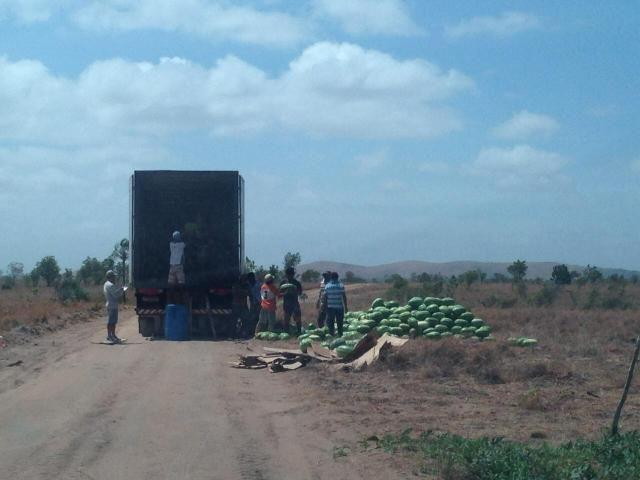 Fazenda no Bonfim - Foto 5