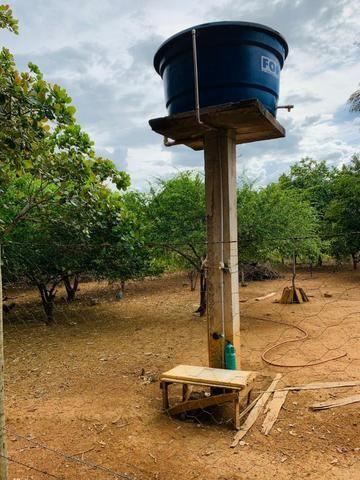 Samuel Pereira oferece: Linda chácara 4,2 hectares, Núcleo Rural Bom Sucesso regularizado - Foto 20