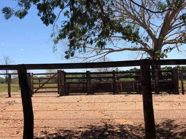 Fazenda - Paraíso do Tocantins/TO - Foto 7