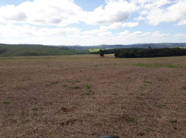 Terreno rural - Foto 12