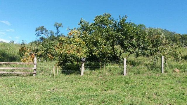 Velleda oferece 35 hectares , 1 km da cidade, local paradisíaco - Foto 18