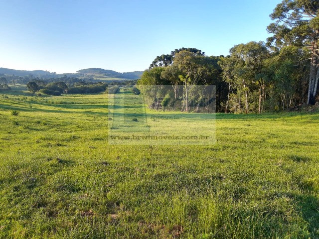 Terreno Rural com 47.442m² no Capão Alto - Foto 6