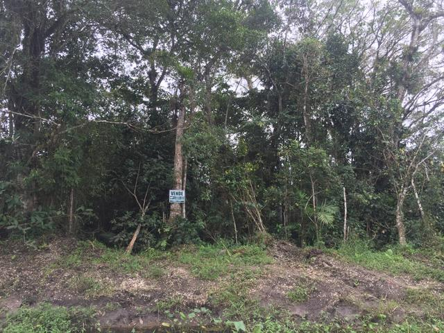 Terreno no Bairro Costeira em Barra do Sul