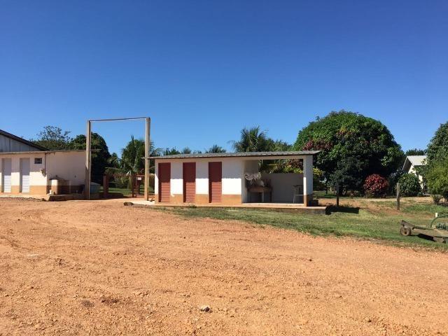 Granja com área de 40 hectares, localizada a 50 km de Lucas do Rio Verde - Foto 15