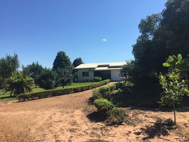 Granja com área de 40 hectares, localizada a 50 km de Lucas do Rio Verde - Foto 16