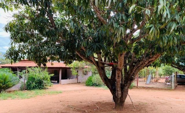 Samuel Pereira oferece: Linda chácara 4,2 hectares, Núcleo Rural Bom Sucesso regularizado - Foto 7