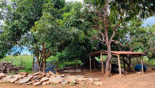 Samuel Pereira oferece: Linda chácara 4,2 hectares, Núcleo Rural Bom Sucesso regularizado - Foto 17