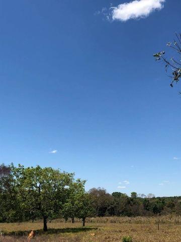 Fazenda - Paraíso do Tocantins/TO - Foto 12